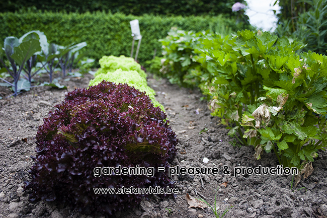 gardening_pleasure_production_0008