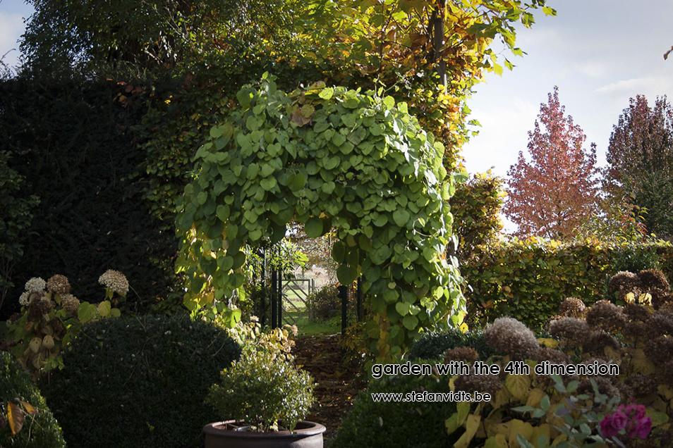 personal_garden_november