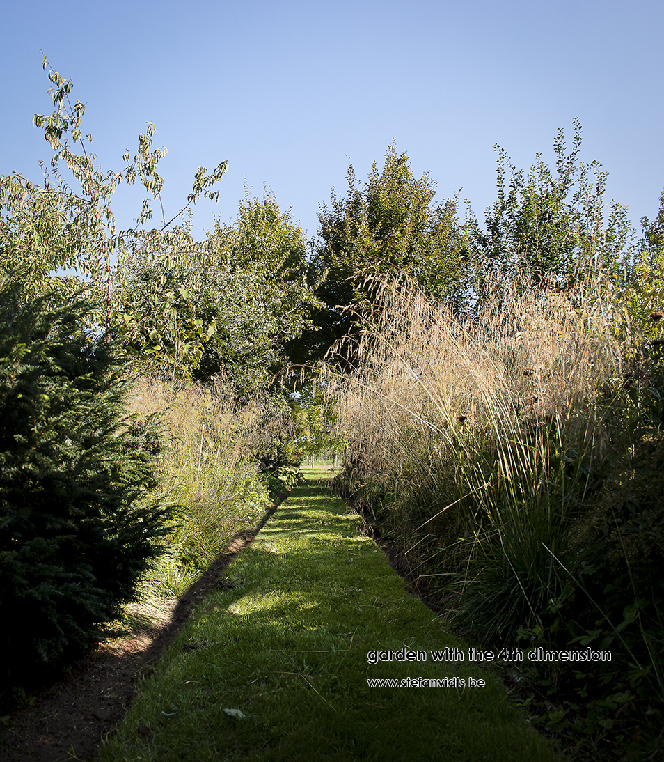 personal_garden_open_woodlabd_summer