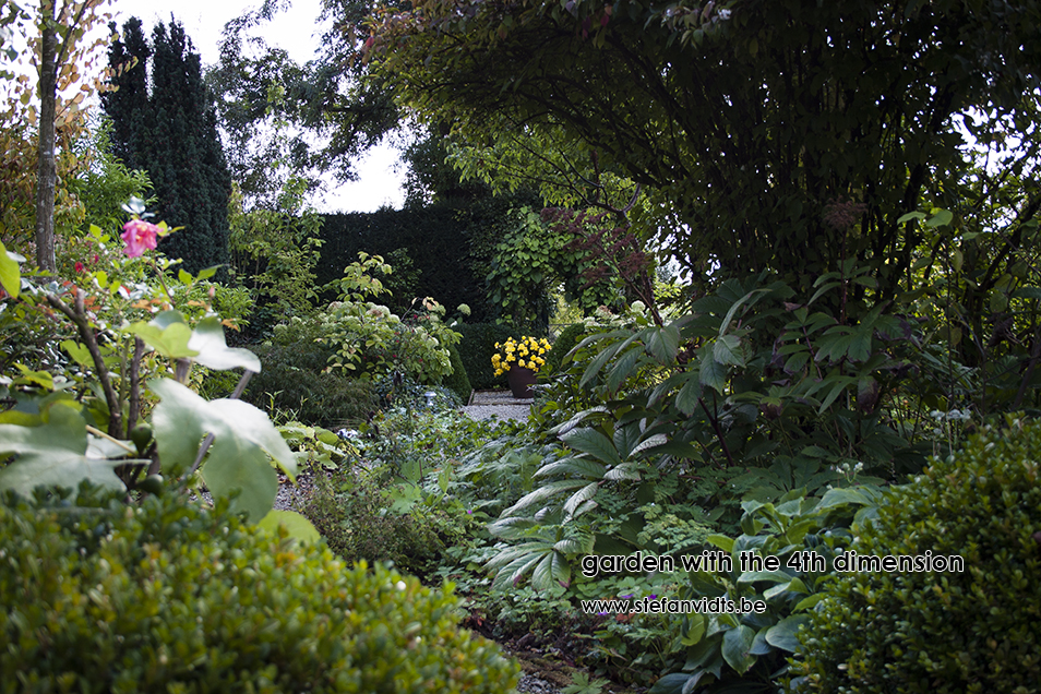 personal_garden_september_0007