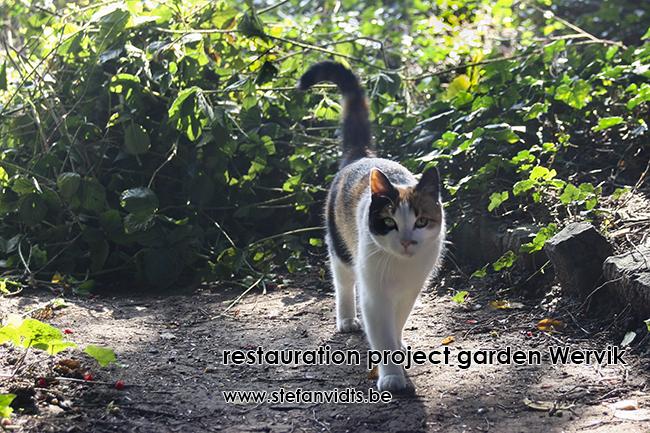 wervik_garden_06