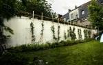 web_enclosed_city_garden_