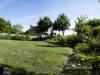 backyard_summer