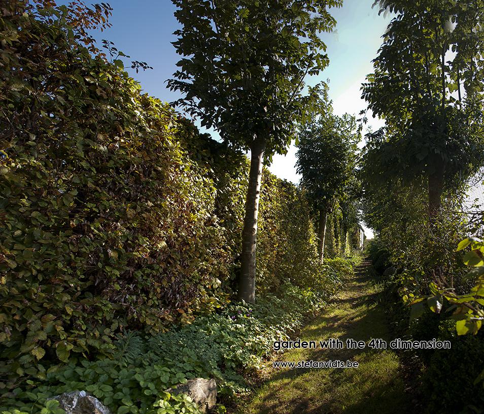 personal_garden_essenlaantje_oktober